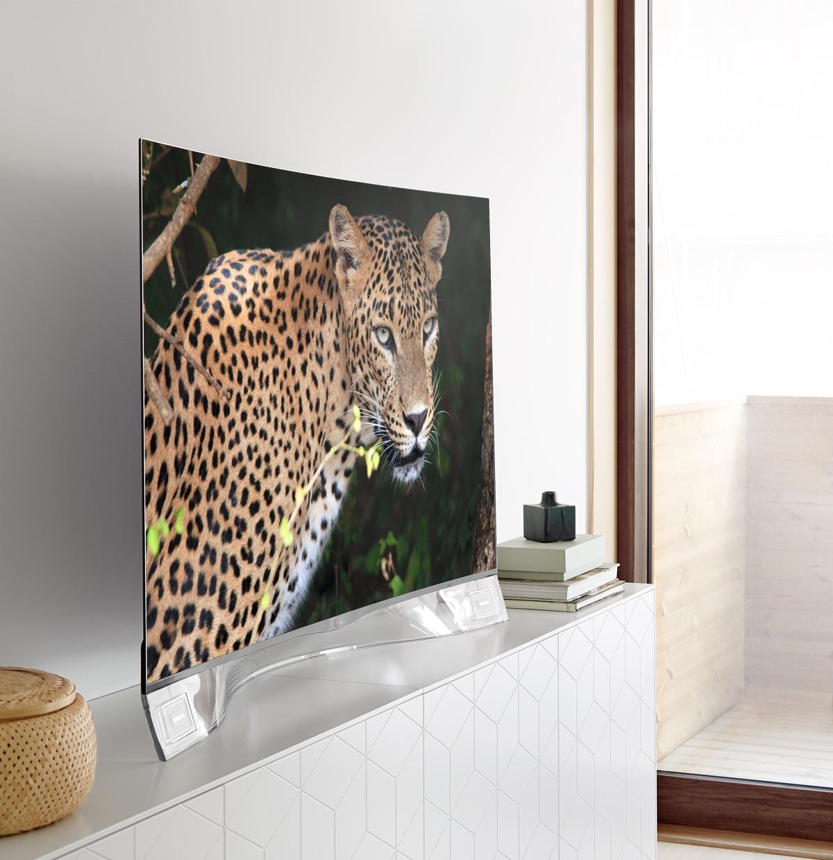 LG_OledCurved_088_leopard